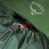 Osprey M's Kestrel 38 Backpack Jungle Green